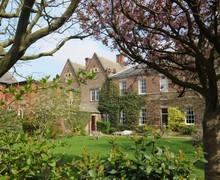 Headmasters garden
